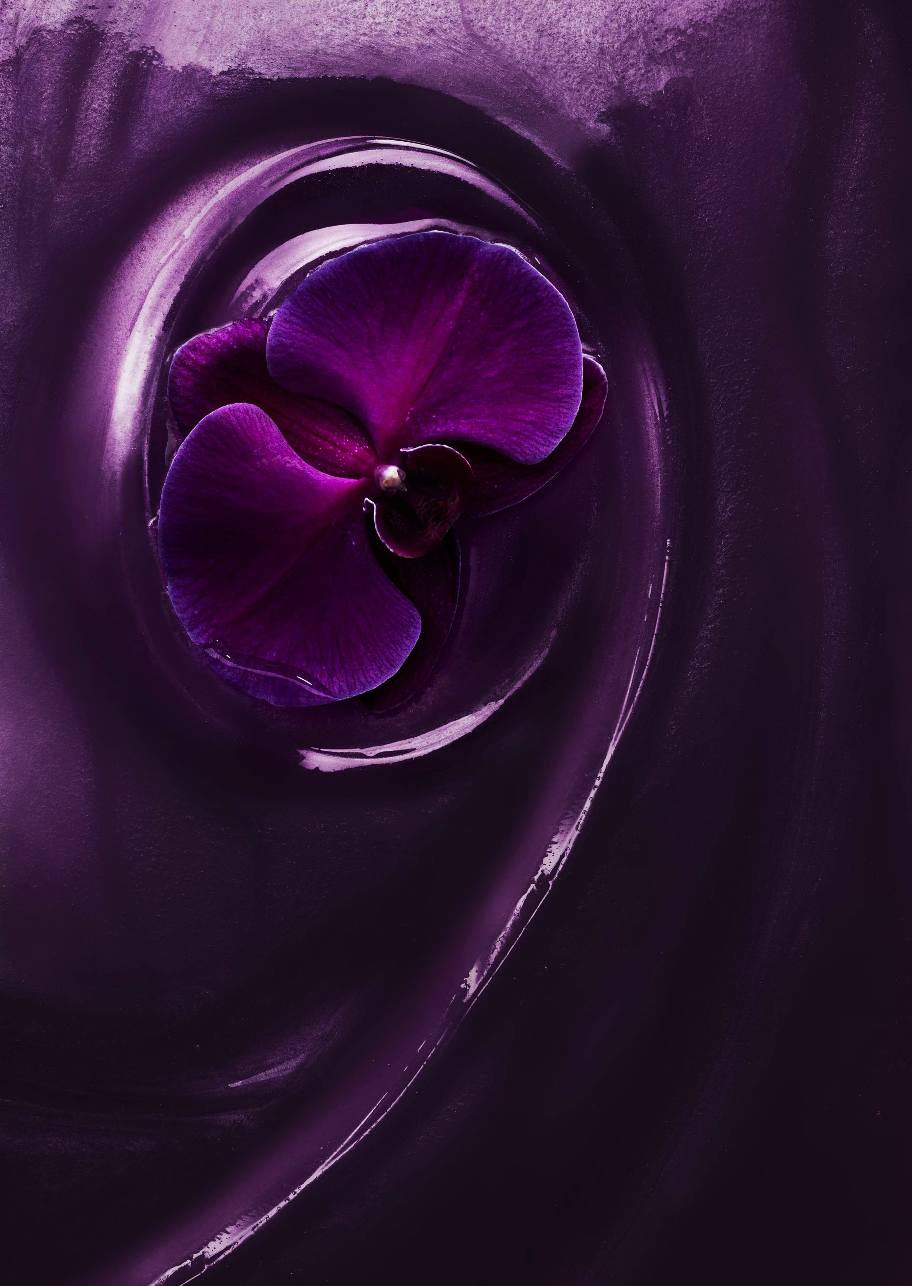 AdrianMueller_Liquids_Photographer_NYC_JKR_Caress_Relax_Orchid_FINAL