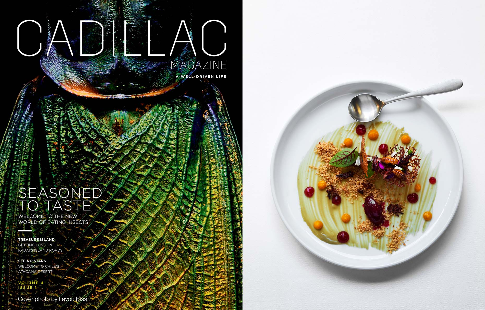 Cadillac_Magazine_Edible_Insects_Adrian_Mueller_01